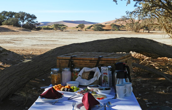 Breakfast Basket to enjoy in the vlei